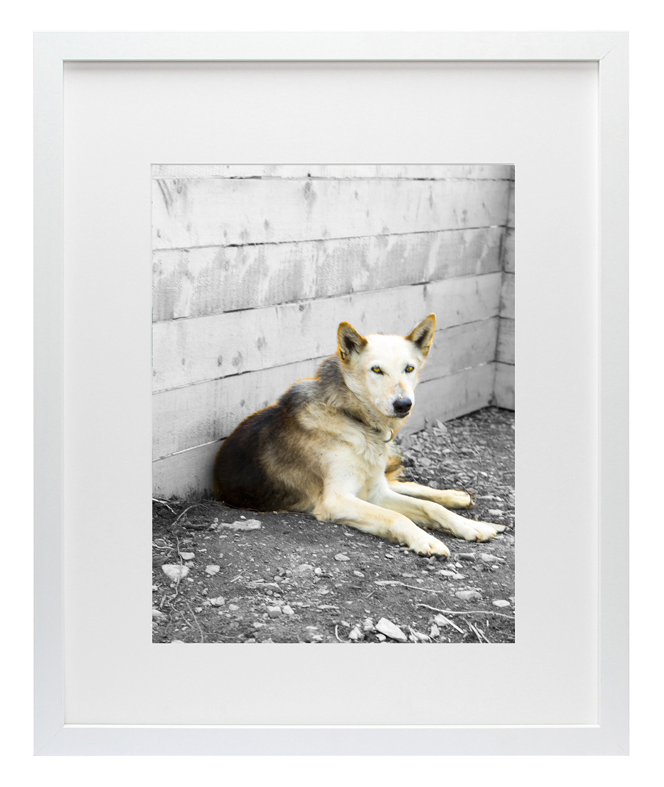 Golden State Art, Simple and Stylish Picture Frame with Ivory Color Mat & Real Glass (16x20, White) by Golden State Art