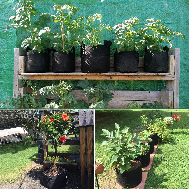 Macetas de Tela con Asas para Flores y Verduras No Tejidos Saco para Plantas de geotextil 5 Piezas PEMOTech Bolsa de Cultivo de Plantas 20L Maceta de Cultivo Degradables Transpirables