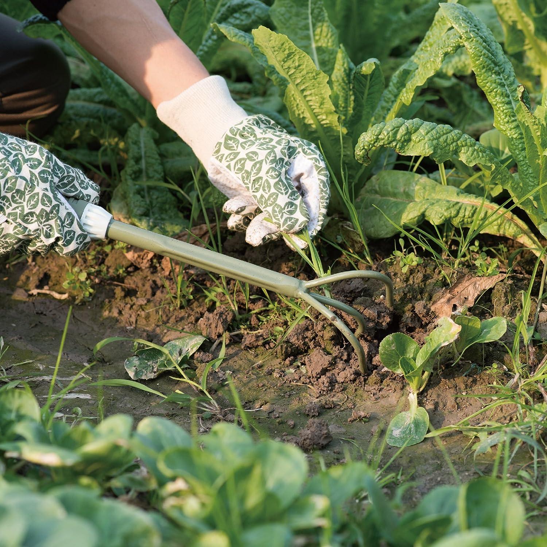 Trasplantadora Jardiner/ía Manual de Acero Inoxidable Worth Garden Herramientas de Jardiner/ía c// Superficie de Espejo Pulido y Mango Suave Ergon/ómico TPR