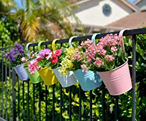 The Valley Garden Hanging Planters, 6'' Metal Iron Hanging Flower Plant Pots (6 Pieces)