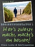 Beziehungsstatus 1: Wer's zuletzt macht, macht's am besten!: Freie Liebe und Ostfriesentee