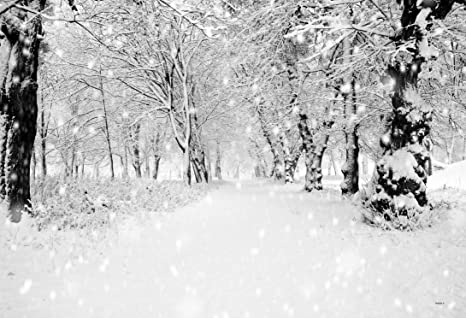 7x5ft white accumulated snow woods christmas photography backdrop photo background ft0263