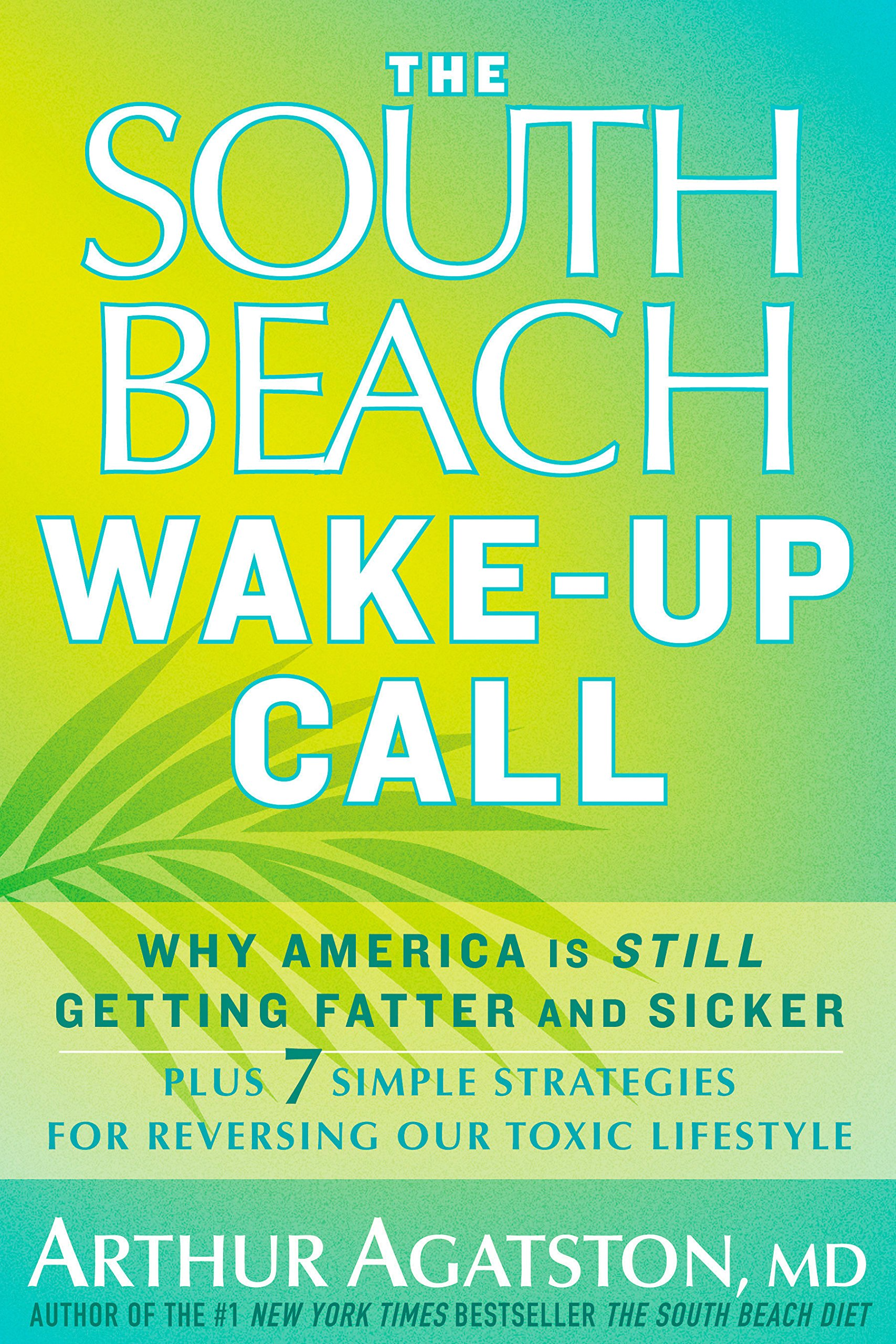 Amazonfr The South Beach Wake Up Call Why America Is Still