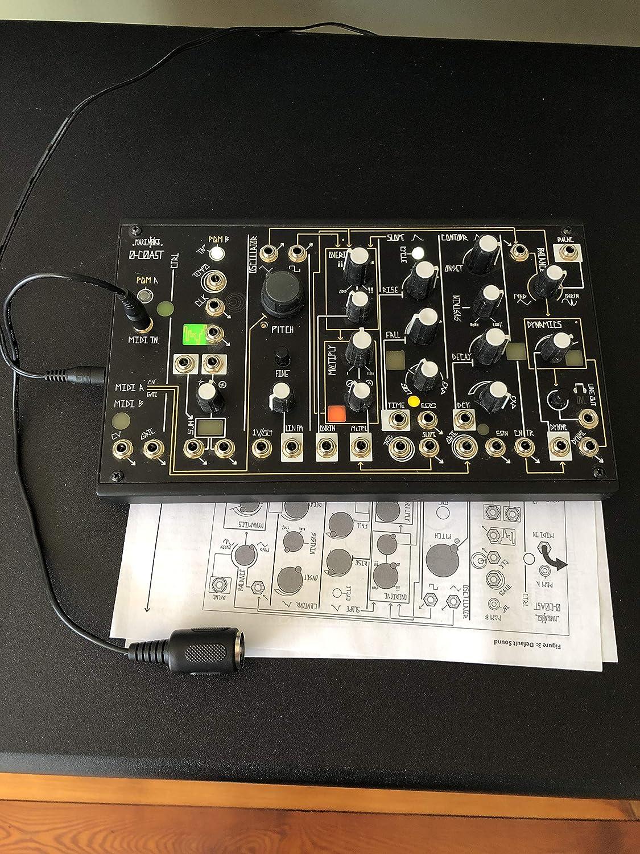 B01I03GXAO Make Noise 0-Coast 91DO6djjvYL._SL1500_
