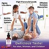 Organic Elderberry Syrup (Extra Strength) Liquid