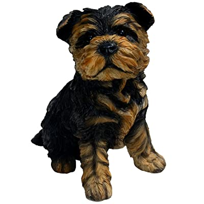 Michael Carr Designs 80091 Sergeant York Yorkshire Terrier Puppy Statue, Small : Garden & Outdoor