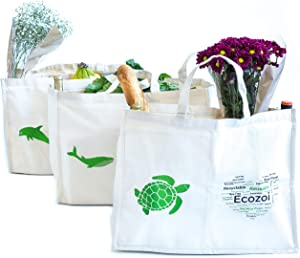 Ecozoi Reusable Grocery Shopping Bags With 6 Organizer Pockets - Set Of 3   Extra Large Heavy Duty Tote Bag Set   Foldable, Collapsible, Washable, Eco-Friendly, Sustainable   Produce Bags