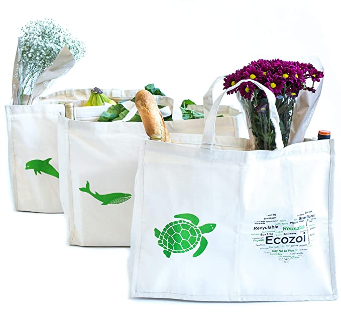 Amazon.com: Ecozoi Bolsas de algodón orgánico extragrande ...
