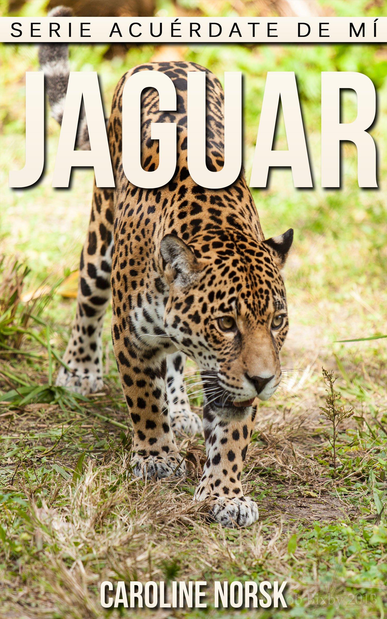 Jaguar: Libro de imágenes asombrosas y datos curiosos sobre los Jaguar para niños (Serie Acuérdate de mí)