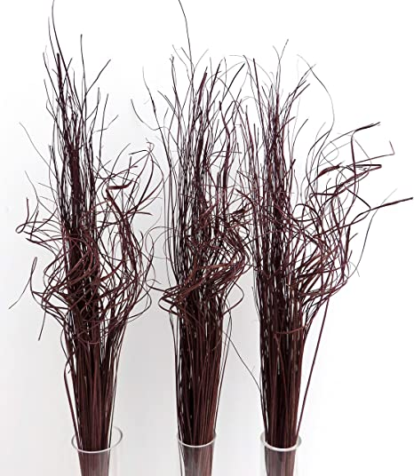 4 x wavy Indian ting natural 100 grams bunch 90-95 cm tall Dried flowers