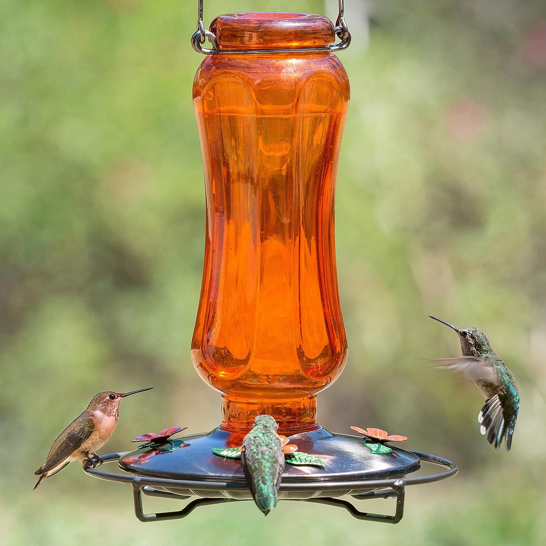 feeder gallon a jar one x to awesome make mason of photo how hummingbird