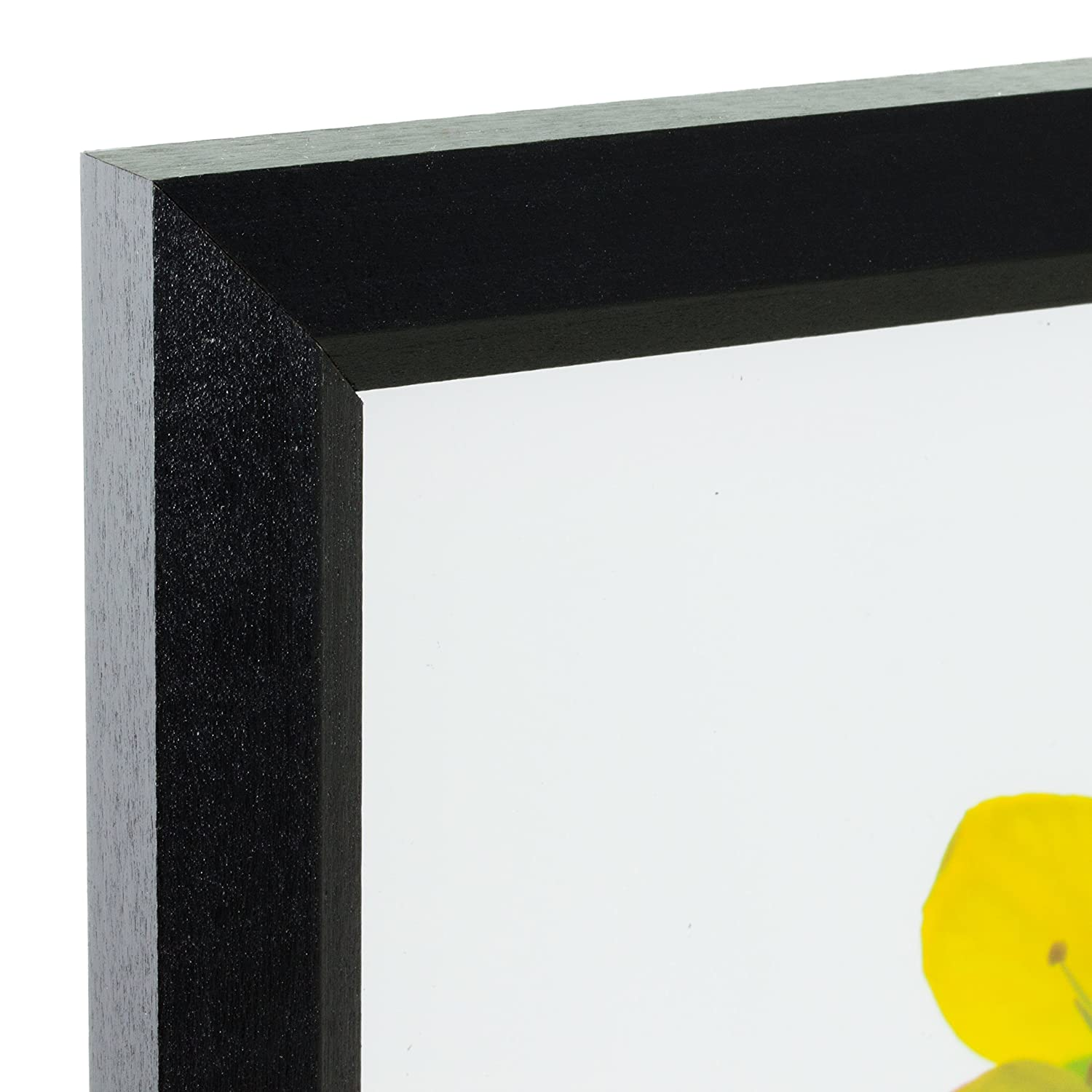 Amazon.com - Craig Frames 7171610BK 8.5 by 11-Inch Picture/Poster ...