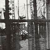 ケイオス・アンド・クリエイション・イン・ザ・バックヤード~裏庭の混沌と創造(紙ジャケット仕様)