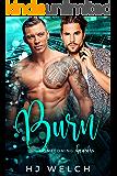 Burn (Homecoming Hearts Book 3)
