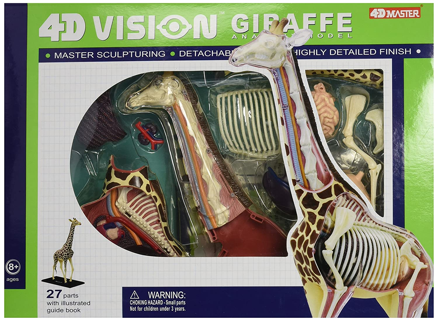 Amazon Famemaster 4d Vision Giraffe Anatomy Model Toys Games