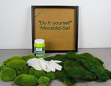 GroB DIY Moosbild Selber Machen, Wandbilder Selber Kleben, Moosbilder Selbst  Gestalten Do It Yourself Set