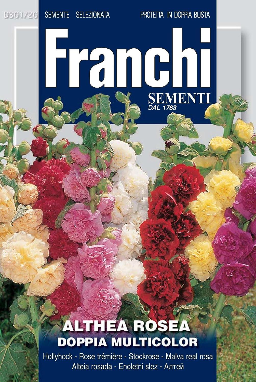 Franchi Samen Stockrose Althea Rossa Doppia Seeds of Italy Ltd