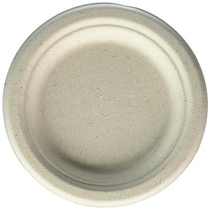 100% compostable and biodegradable 6u0026quot; DISPOSABLE PLATES - (125 COUNT)  sc 1 st  Amazon.com & Amazon.com: 100% compostable and biodegradable 6