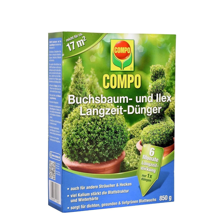Compo 21581Boxwood Long-Lasting Fertiliser 2kg