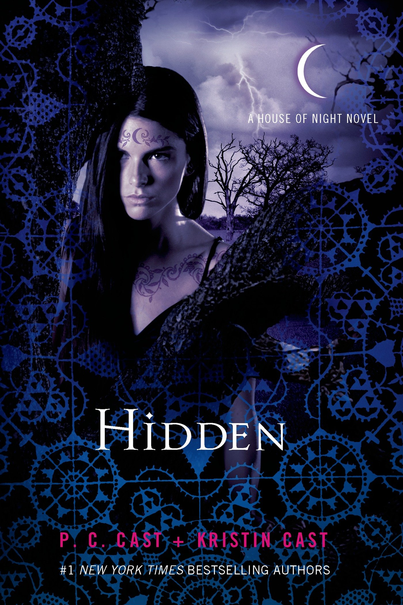 House of night hidden kitchen and living space interior •.