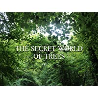The Secret World of Trees