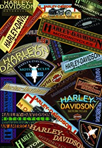 Russ Berrie 644576 Harley-Davidson Logo Collage Garden Flag