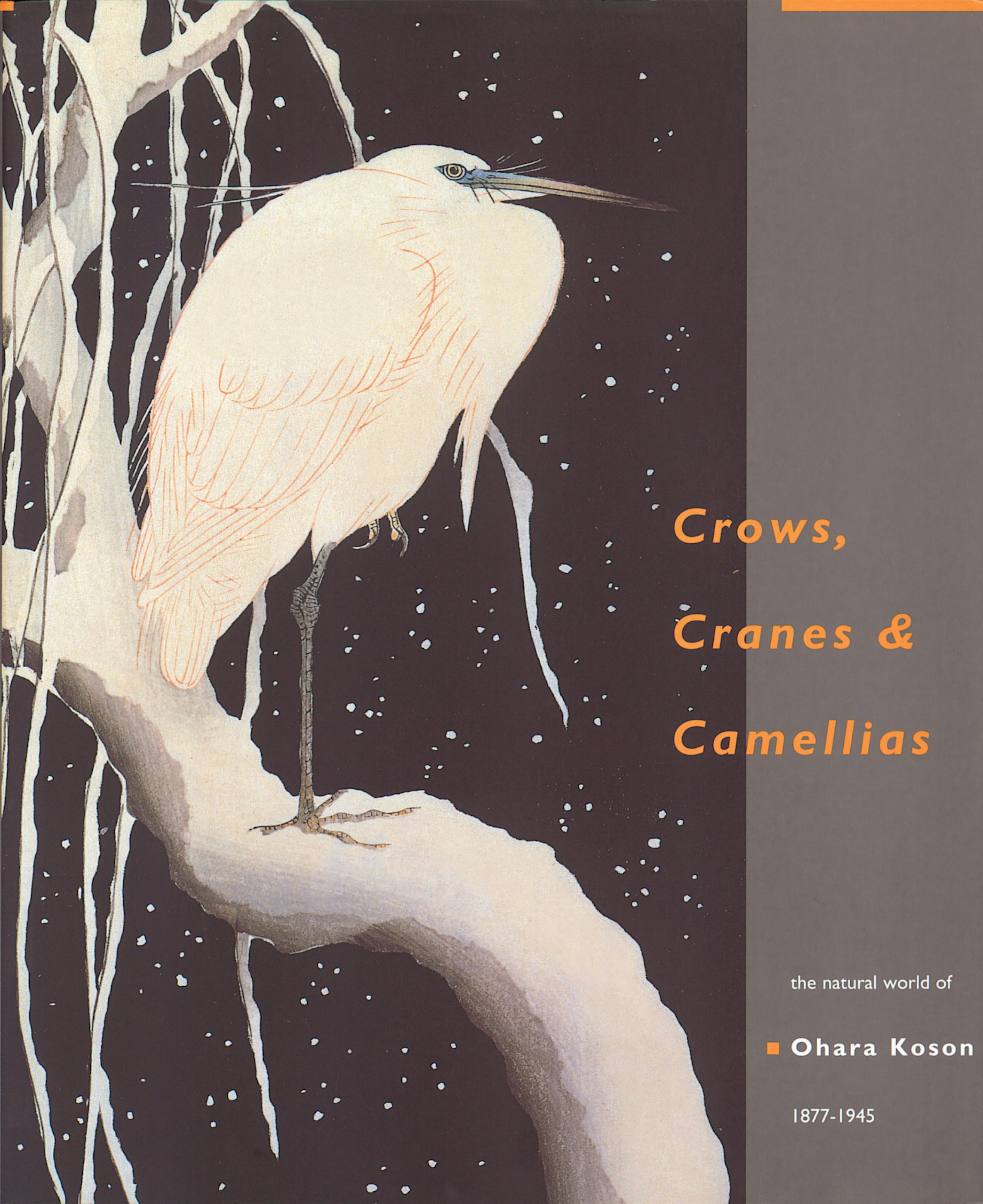 Download Crows, Cranes and Camellias: The Natural World of Ohara Koson 1877-1945 pdf