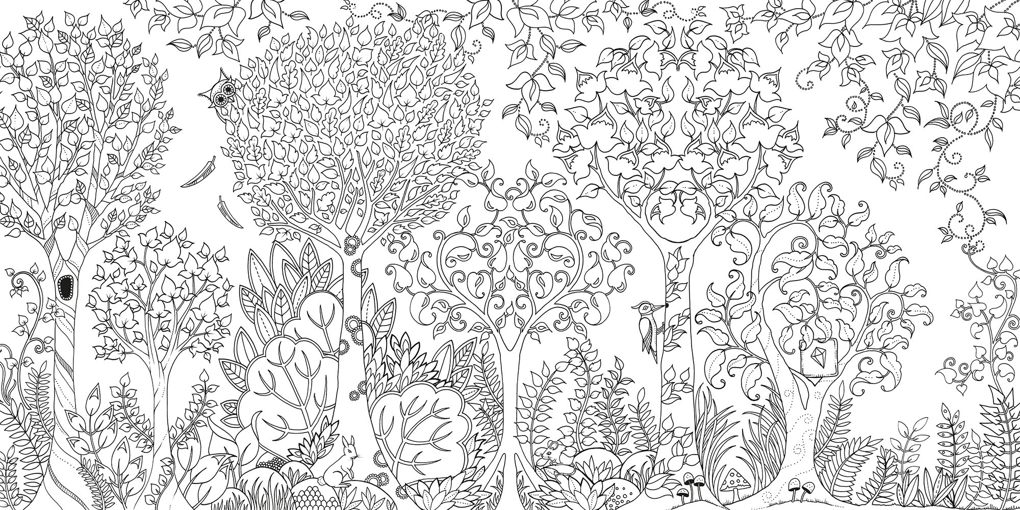 A fun magic coloring book amazon - Amazon Com Enchanted Forest An Inky Quest Coloring Book 6063887956574 Johanna Basford Books