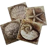 Nautical Ocean Beach Coaster Set of 4 | Assorted Seaside Ceramic Coaster with Cork Backing | Starfish Seashell Sand Dollar and Snail Shell