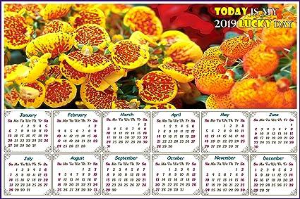 Calendar Day Counter 2019 Amazon.: 2019 Magnetic Calendar   Calendar Magnets   Today is