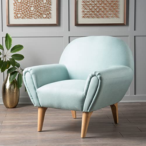 Christopher Knight Home 300225 Eliza Fabric Arm Chair, Light Blue