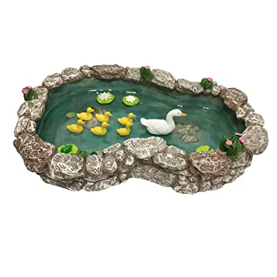 GlitZGlam Duck Pond -Mother and Ducklings! A Miniature Duck Pond for a Miniature Fairy Garden and Miniature Garden Accessories: Garden & Outdoor