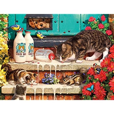 Buffalo Games - Cats Collection - Doorstep Raiders - 750 Piece Jigsaw Puzzle: Toys & Games