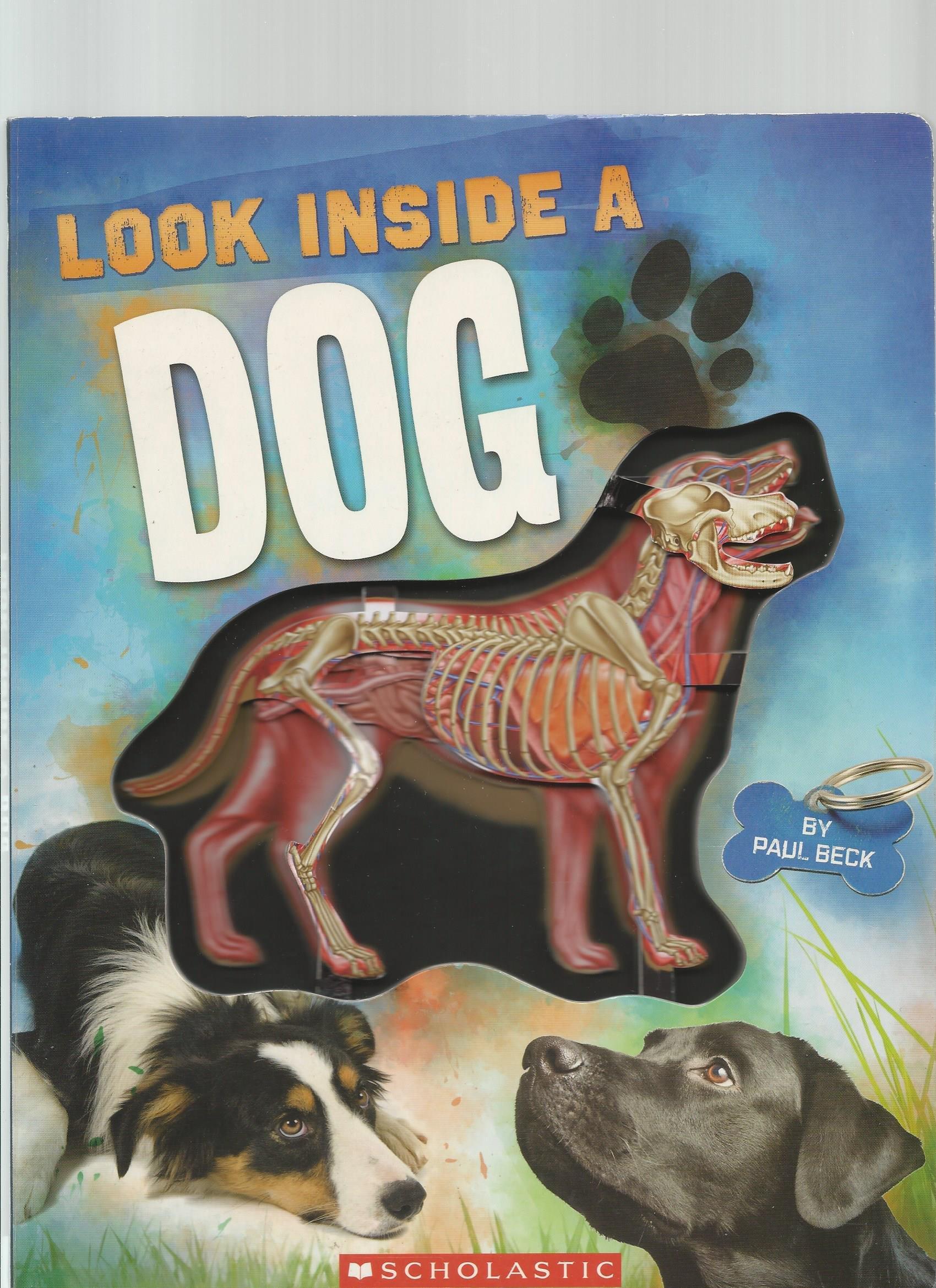Download Look Inside a Dog pdf