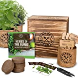 Indoor Herb Garden Starter Kit - Heirloom, Non-GMO Herb Seeds - Basil Thyme Parsley Cilantro Seed, Potting Soil, Pots, Scisso