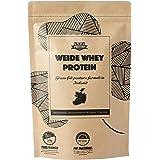 350 g Whey Protein (naturale) da latte di mucche irlandesi al pascolo 100% naturale