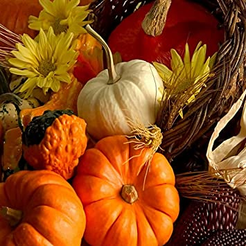 Amazon Thanksgiving Wallpapers Appstore For Android
