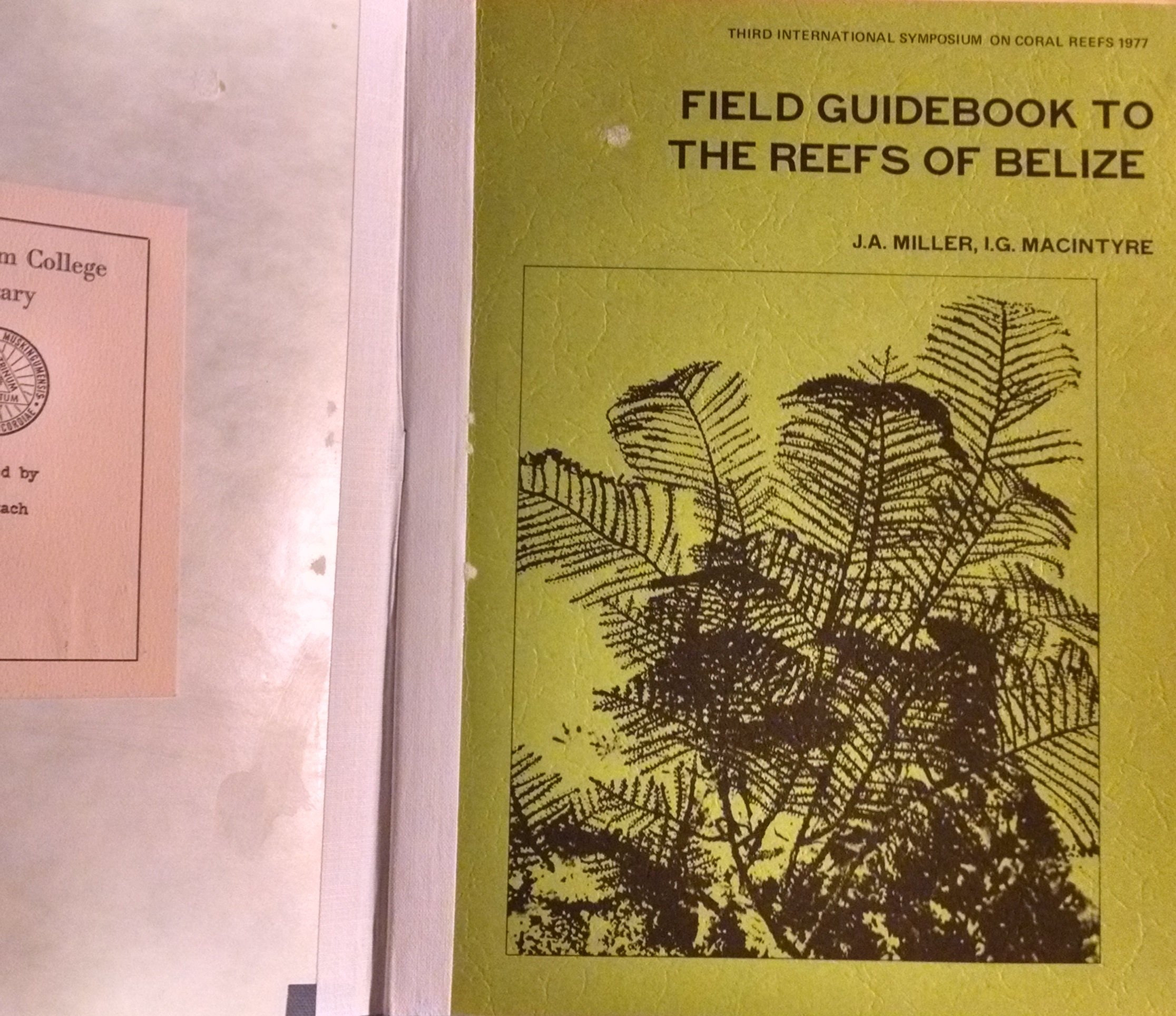 Field guidebook to the reefs of Belize