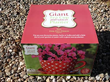 Giant Tea Cup and Saucer Planter Love Hearts: Amazon.co.uk: Garden ...