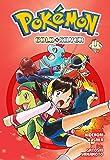 Pokémon Gold & Silver - Volume 4