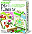 4M Green Creativity Pressed Flower Art