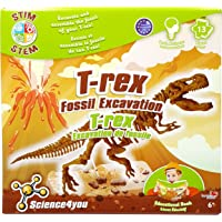 Science4you T-Rex Fossil Excavation