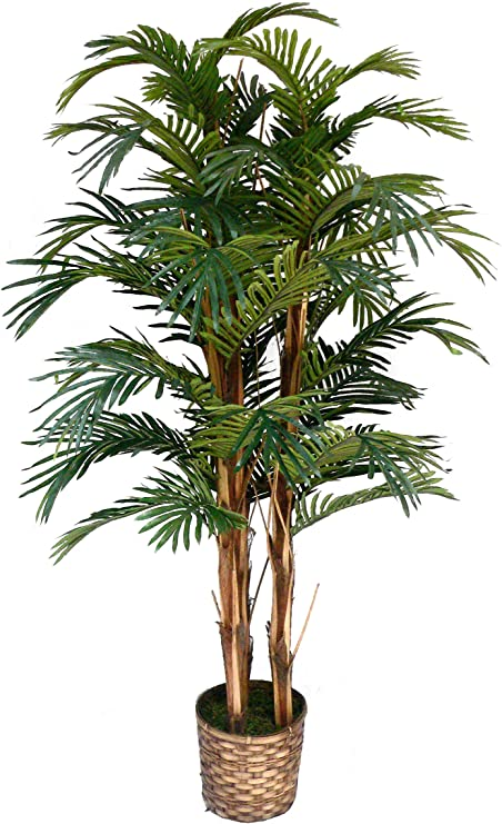 Amazon Com Vintage Home 5 Foot Tall High End Realistic Silk Palm Tree With Wicker Basket Planter Home Kitchen