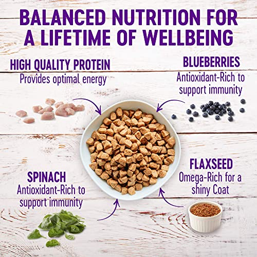 Wellness Complete Health Natural Dry Small Breed Dog Food Small Breed Turkey Oatmeal