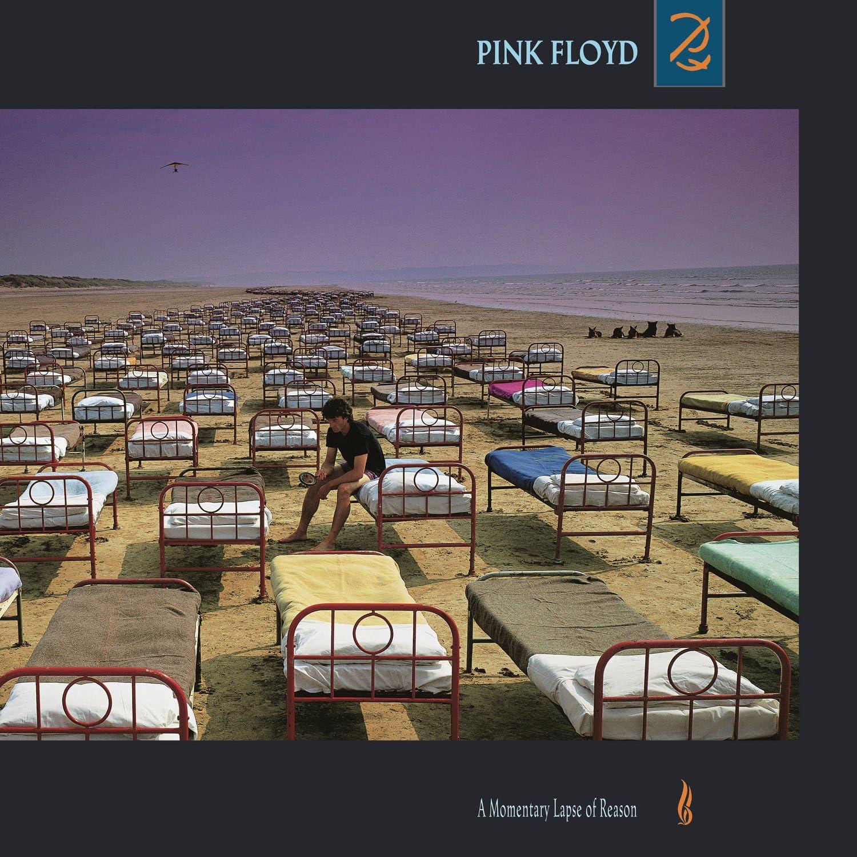 A Momentary Lapse of Reason (Vinyl): Amazon.com.mx: Música