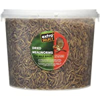Extra Select Mealworms Tub 3ltr