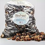 Bio Noci o Noci del Sapone - Detersivo vegetale naturale - 1000 grammi