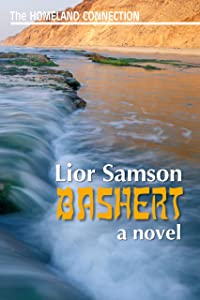 Bashert (The Homeland Connection Book 1)