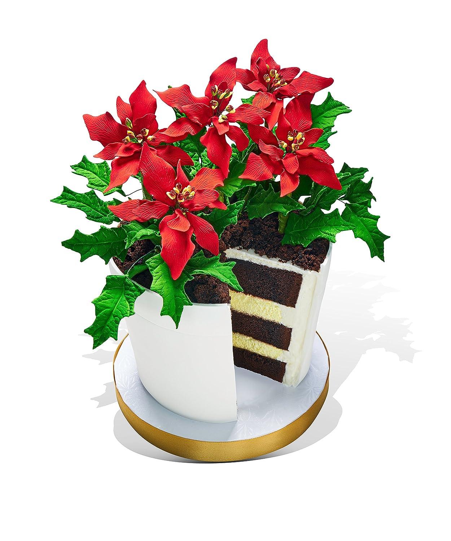 Amazon Poinsettia Flower Pot Cake Grocery Gourmet Food
