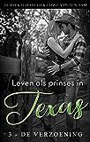 Leven als prinses in Texas (3 - de verzoening) (Cowboys en prinsessen)